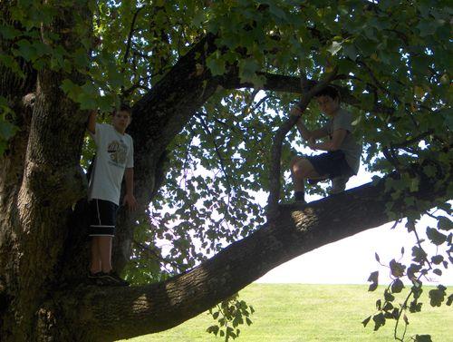 Georgie and Matt out on a limb
